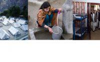 sanitation health shelter pakistan